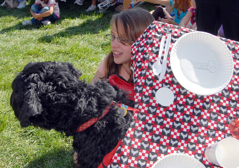 Gwen Mulligan, 12, dressed her dog Shadow as a table for the Best Dressed Dog Contest during Broomfield Days at Midway Park on Saturday.<br /> <br /> Sept. 19, 2009<br /> Staff photo/David R. Jennings