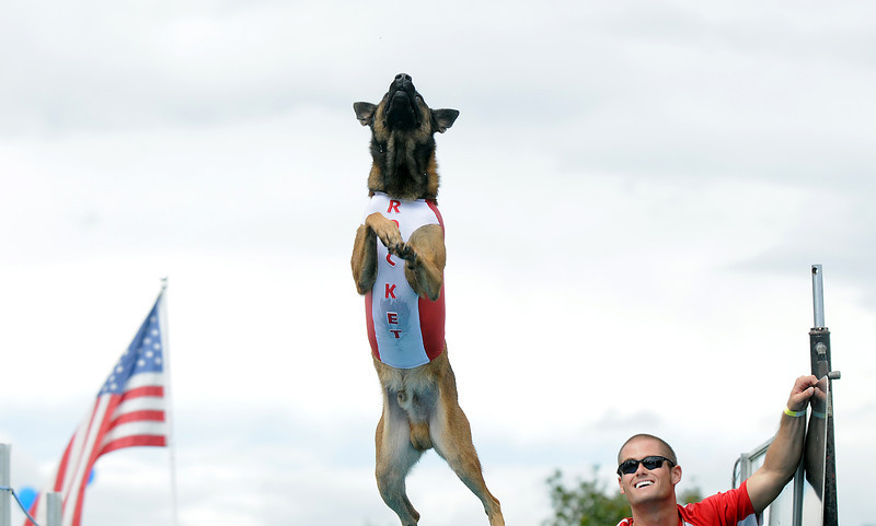 "Daivd Smith watches his dog Rocket go after a ""toy"" during dock Dogs at Broomfield Days in Midway Park on Saturday.<br /> September 17, 2011<br /> staff photo/ David R. Jennings"