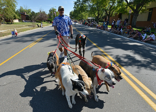 David Edelstein with Team Pit-A-Full, walks a group of dogs down Midway Blvd. during the parade at Broomfield Days.<br /> September 15, 2012<br /> staff photo/ David R. Jennings