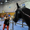 Kelsey Jones, 16, lassos a horse model in the calf roping area during the public tour of Broomfield High's JAM,  Just After Midnight , at the school on Saturday. <br /> <br /> April 28, 2012 <br /> staff photo/ David R. Jennings
