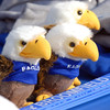Toy Eagles were for sale at the Booster club's booth at the tailgate party before Friday's game against Monarch.<br /> September 16, 2011<br /> staff photo/ David R. Jennings