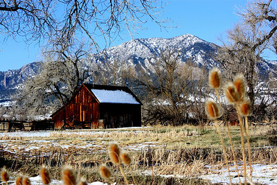 Photo by Sheri Montgomery/Broomfield Photo Club