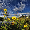 Photo by Gretchen Steinbrueck/Broomfield Photography Club