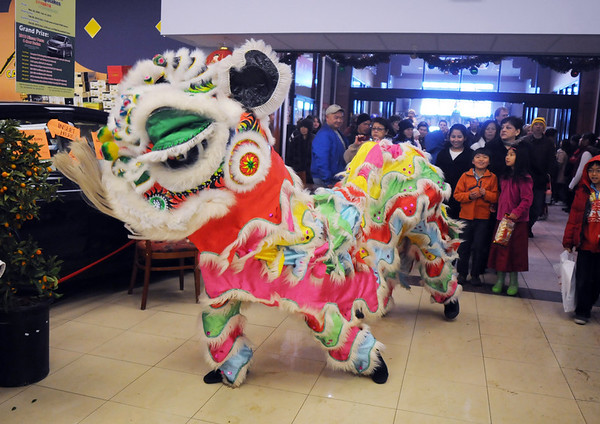 A lion with the Tai Kung Ha Holistic Fitness Center enters the Pacific Ocean Marketplace in Broomfield for the Lion Dance in celebration of the Chinese New Year, the year of the Tiger, on Sunday.<br /> <br /> February 14, 2010<br /> Staff photo/David R. Jennings