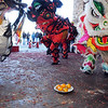 The three Lions approach a plate of oranges at the entrance of Pacific Ocean Marketplace in Broomfield on Sunday. Members of Tai Kung Ha Holistic Fitness Center perform the Lion Dance in celebration of the Chinese New Year, the year of the Tiger.<br /> <br /> February 14, 2010<br /> Staff photo/David R. Jennings