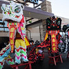 The three lions of Tai Kung Ha Holistic Fitness Center unfold signs during the Lion Dance for Chinese New Year, the year of the Tiger, at Pacific Ocean Marketplace in Broomfield on Sunday.<br /> <br /> February 14, 2010<br /> Staff photo/David R. Jennings