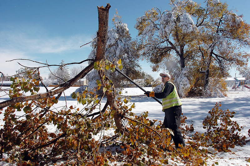 Rich Lozano, parks operations for the Broomfield City and County,  on Wednesday, cuts a tree branch that fell in Northmoor Park.<br /> October 27, 2011<br /> staff photo/ David R. Jennings