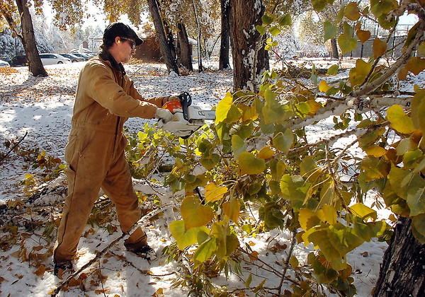 Matthew Martella, parks operations for the Broomfield City and County, on Wednesday, cuts tree branches that fell in Northmoor Park due to the October snow storm earlier this week.<br /> October 27, 2011<br /> staff photo/ David R. Jennings