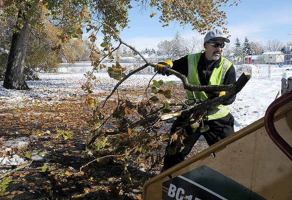 Rich Lozano, parks operations for the Broomfield City and County, on Wednesday,  throws a tree branch into a wood chipper in Northmoor Park.<br /> October 27, 2011<br /> staff photo/ David R. Jennings