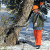 Rich Lozano, parks operations for the Broomfield City and County,  on Wednesday, drags a tree branch, that fell in Northmoor Park to the wood chipper.<br /> October 27, 2011<br /> staff photo/ David R. Jennings