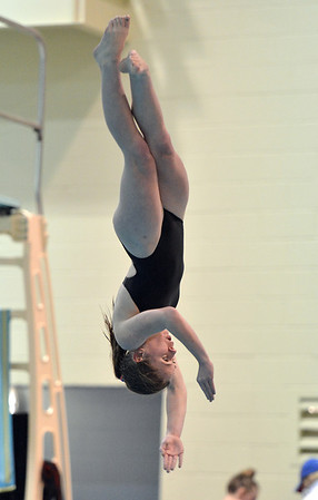 Monarch's Grace Newell makes a dive during the Colorado Coaches Association Invitational at the Veterans Memorial Aquatic Center in Thornton on Saturday.<br /> December 14, 2012<br /> staff photo/ David R. Jennings