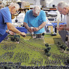 Broomfield Veterans Memorial Museum members Bob Davis, left, Marv Eakes and Dr. Bill Markel work on the diorama depicting Pickett's Charge at the Battle of Gettysburg at Fine Art Mannequins studio on Wednesday.<br /> July 6 2011<br /> staff photo/ David R. Jennings