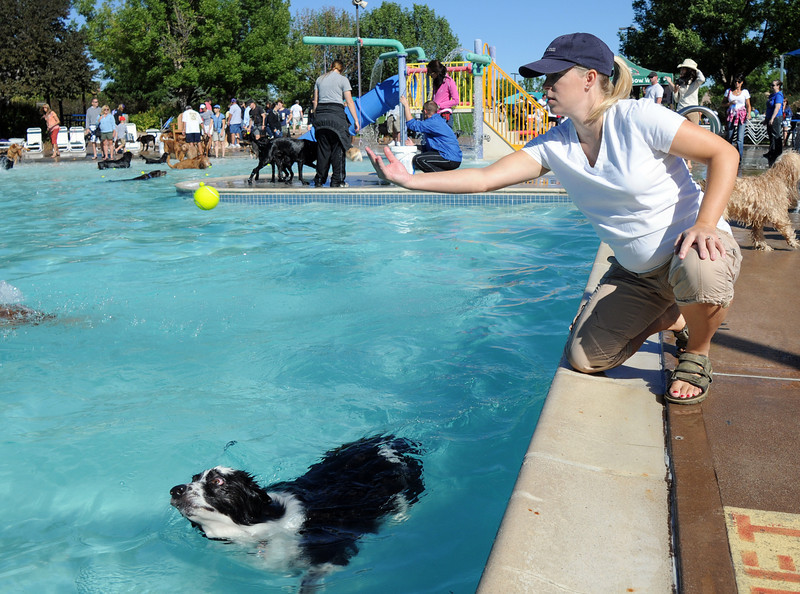 BE0919DAZE20<br /> Kelly Klatt throws a tennis ball for Ace to swim after during Dog Daze at the Bay on Saturday.<br /> <br /> September 11, 2010<br /> staff photo/David R. Jennings