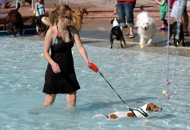 BE0919DAZE13<br /> Lauren Testa keeps Chester on a leash while in the water at Dog Daze at the Bay on Saturday.<br /> <br /> September 11, 2010<br /> staff photo/David R. Jennings