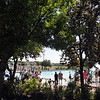 People watch their dogs playing in the pool during Dog Daze at the Bay on Saturday.<br /> September 10, 2011<br /> staff photo/ David R. Jennings