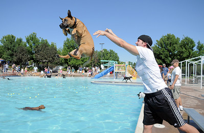 Bryan McCready tosses his boxer mix Cooper into the water during Dog Daze at the Bay on Saturday. September 10, 2011 staff photo/ David R. Jennings