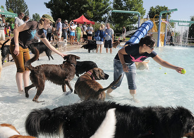 Lisa Lefever, left, and Kelsey Finnegan throw balls for other dogs during Dog Daze at the Bay on Saturday.  September 10, 2011 staff photo/ David R. Jennings
