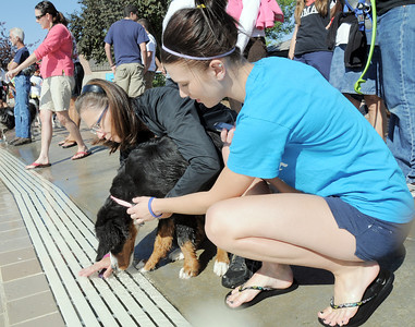 Susan Poulter, left, and her daughter Lily, 15, encourages McKinley, 5 months- old, to go into the water for the first time during Dog Daze at the Bay on Saturday. September 10, 2011 staff photo/ David R. Jennings