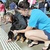 Susan Poulter, left, and her daughter Lily, 15, encourages McKinley, 5 months- old, to go into the water for the first time during Dog Daze at the Bay on Saturday.<br /> September 10, 2011<br /> staff photo/ David R. Jennings
