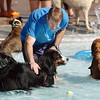 Calvin Harding gives some encouragement to his dog Koda who's swimming for the first time during Dog Daze at the Bay on Saturday.<br /> September 10, 2011<br /> staff photo/ David R. Jennings