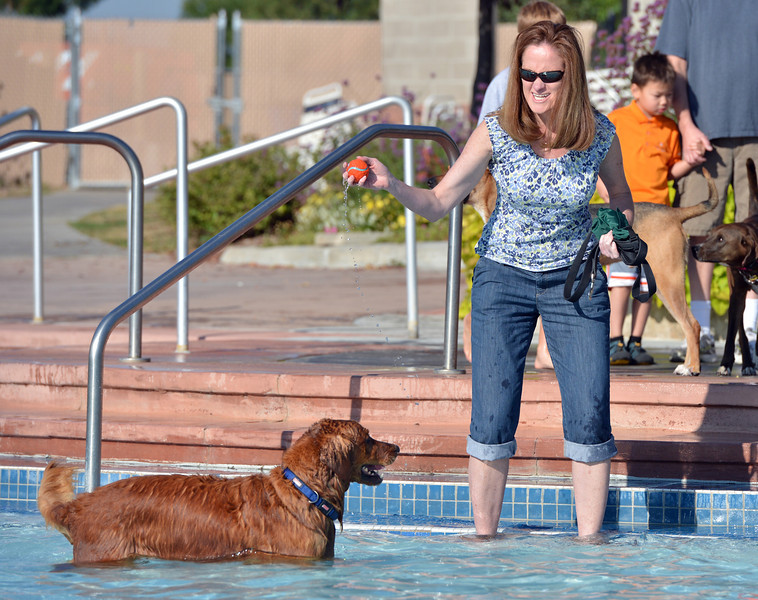 Debbie Early gets ready to toss a ball for her dog Max during the first session of Dog Daze at the Bay on Saturday at The Bay Aquatic Park.<br /> September 8, 2012<br /> staff photo/ David R. Jennings