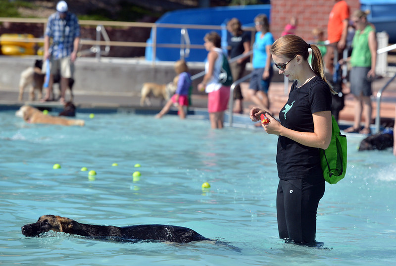 Ginger Levy keeps up with her dog Kayln swimming in the water during the first session of Dog Daze at the Bay on Saturday at The Bay Aquatic Park.<br /> September 8, 2012<br /> staff photo/ David R. Jennings