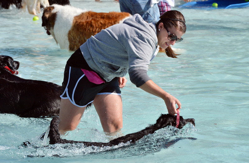 Lindsey Terranova helps her dog Belford to swimduring the first session of Dog Daze at the Bay on Saturday at The Bay Aquatic Park.<br /> September 8, 2012<br /> staff photo/ David R. Jennings