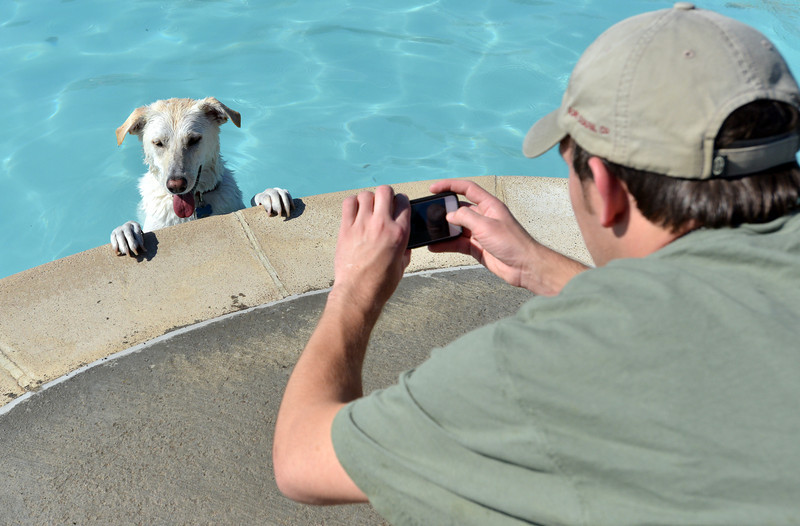 Alex Jimenez takes pictures of his dog Lucy during the first session of Dog Daze at the Bay on Saturday at The Bay Aquatic Park.<br /> September 8, 2012<br /> staff photo/ David R. Jennings