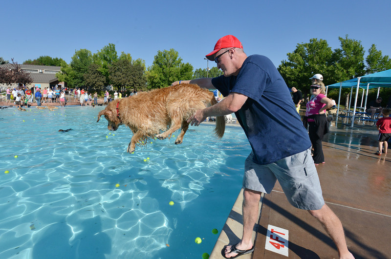 John O'Keeffe tosses his dog Molly into the water during the first session of Dog Daze at the Bay on Saturday at The Bay Aquatic Park.<br /> September 8, 2012<br /> staff photo/ David R. Jennings