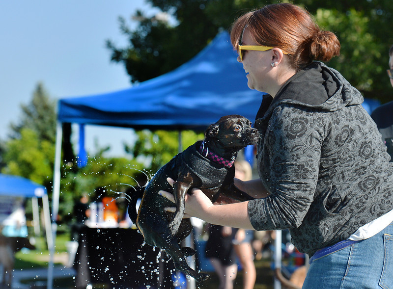 Cortney Warren tosses her dog Dutchess into the water during the first session of Dog Daze at the Bay on Saturday at The Bay Aquatic Park.<br /> September 8, 2012<br /> staff photo/ David R. Jennings