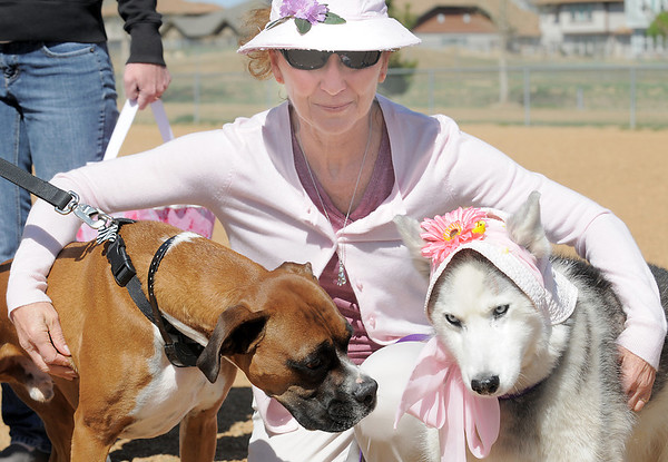 Cathy Balogh, center, holds her dog Isis, left, and Frisco, owned by Nicole Guran during the Paws in the Park egg hunt and Easter bonnet parade at the Broomfield County Commons Dog Park on Saturday.<br /> April 7, 2012 <br /> staff photo/ David R. Jennings