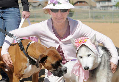 Cathy Balogh, center, holds her dog Isis, left, and Frisco, owned by Nicole Guran during the Paws in the Park egg hunt and Easter bonnet parade at the Broomfield County Commons Dog Park on Saturday. April 7, 2012  staff photo/ David R. Jennings