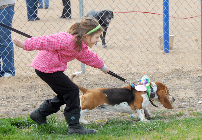 Sarah Stussi, 7, teis to keep up with her dog George during the bonnet parade at the Easter Egg Hunt for Dogs at the Broomfield County Commons Dog Park on Saturday.<br /> <br /> April 23, 2011<br /> staff photo/David R. Jennings