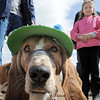 George wears a bonnet made by Sarah Stussi, 8, right, as they prepare for the bonnett parade during the Easter Egg Hunt for Dogs at the Broomfield County Commons Dog Park on Saturday.<br /> <br /> April 23, 2011<br /> staff photo/David R. Jennings