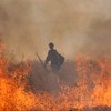 A firefighter walks through a safe area of a controlled burn by North Metro Fire Rescue District fon 20 acres of the City and County of Broomfield's Hoopes Farm at Lowell Blvd. and 144th Ave.  The burn was not only a training session for North Metro Wildland Team but also is being used as a weed control and study by the county. <br /> <br /> <br /> March 17, 2010<br /> Staff photo/David R. Jennings