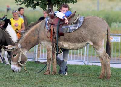A worker with Wild West Ranch rests with a donkey during Broomfield's Great American Picnic at County Commons Park.  July 4, 2009 staff photo/David Jennings