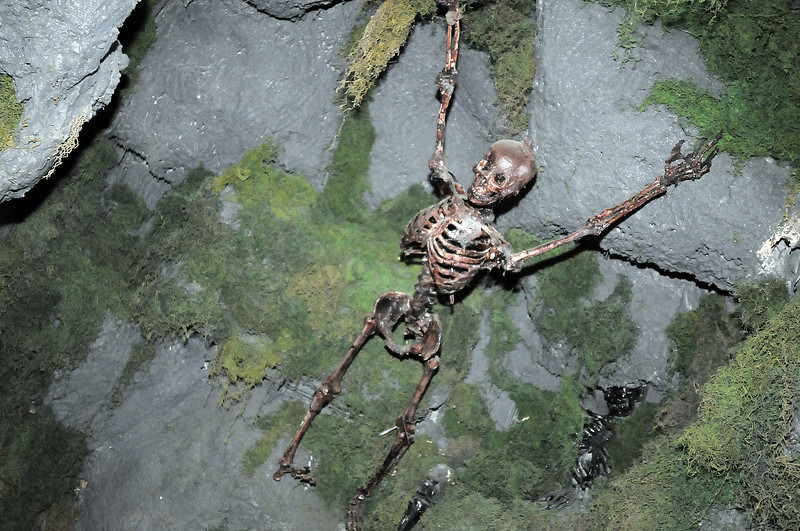 A skeleton on the ceiling of a section of the mine at the Frightmare house at 108th and Olde Wadsworth on Saturday.<br /> October 15, 2011<br /> staff photo/ David R. Jennings