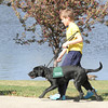 Quinn Nicodemus, 8, walks with Kaelyn during Guide Dogs for the Blind, puppy in training demonstration at Community Park.<br /> April 6, 2012 <br /> staff photo/ David R. Jennings