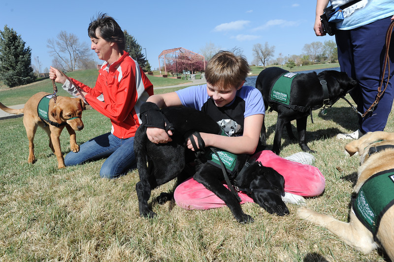 Anna Nicodemus, 11,  plays with Bonita while Sara Gettelman works with Viva during a Guide Dogs for the Blind, puppy in training demonstration at Community Park.<br /> <br /> April 6, 2012 <br /> staff photo/ David R. Jennings