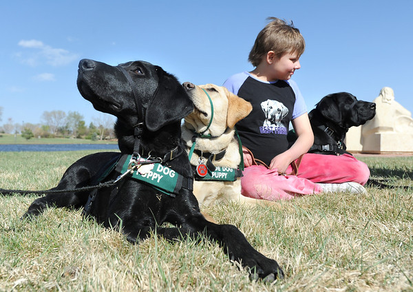 Anna Nicodemus, 11, keeps track of Bonita, left, Keena,  and Kaelyn during a break the Guide Dogs for the Blind, puppy in training demonstration at Community Park.<br /> <br /> April 6, 2012 <br /> staff photo/ David R. Jennings