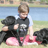 Anna Nicodemus, 11, works on getting Bonita, left, and Kaelyn used to human interaction during Guide Dogs for the Blind, puppy in training demonstration at Community Park.<br /> April 6, 2012 <br /> staff photo/ David R. Jennings