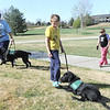 Quinn Nicodemus, 8, center, works with Kaaelyn while his mother Gwen, left, walks with Bonita and his sister Anna, 11, walks with Keena during a Guide Dogs for the Blind, puppy in training demonstration at Community Park.<br /> April 6, 2012 <br /> staff photo/ David R. Jennings