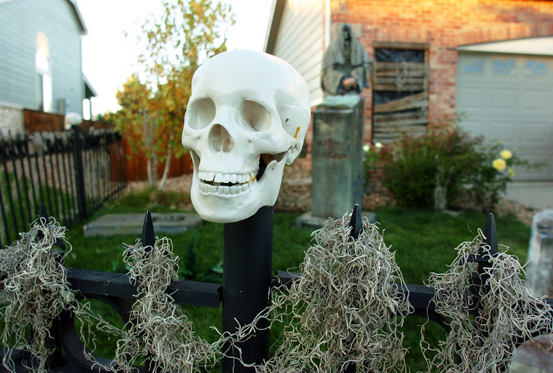 Skulls mark the posts of a fence for the Halloween display at 4335 Lexi Circle on Thursday<br /> <br /> October 21, 2010<br /> staff photo/David R. Jennings