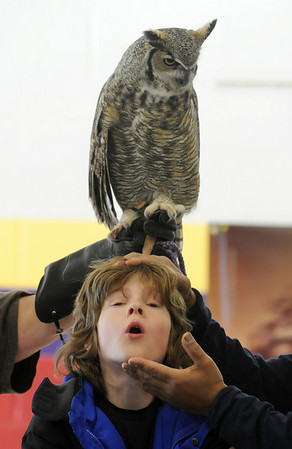 James Barrett has his head tilted up to get the perspective of a mouse seeing a Great Horned Owl during a presentation by HawkQuest master falconer Kin Quitugua to Westlake Middle School 6th graders in the Wolf Pack Corps on Tuesday.<br /> <br /> November 24, 2009<br /> Staff photo/David R. Jennings