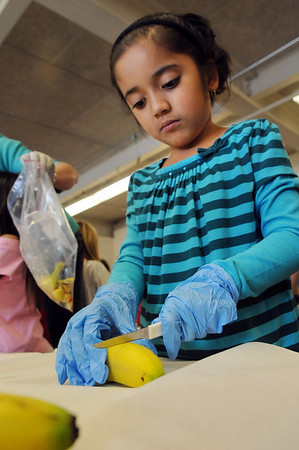 Emerald Elementary School 2nd grader, Ilian Arello carefully cuts bananas while helping to prepare healthy snacks during the Healthy Learning Paths program by Dr. Chris Marchioni on Tuesday.<br /> <br /> October 20, 2009<br /> Staff photo/David R. Jennings