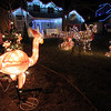 Pink flamingos and other animals add to the holiday spirit at 1241 Dover Ct. with other homes decorated on Dover Court.<br /> December, 2010<br /> staff photo/David R. Jennings