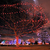 The trees decorated in the holiday spirit in Midway Park.<br /> December, 2010<br /> staff photo/David R. Jennings