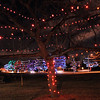 Holiday lights on the trees in Midway Park.<br /> December, 2010<br /> staff photo/David R. Jennings