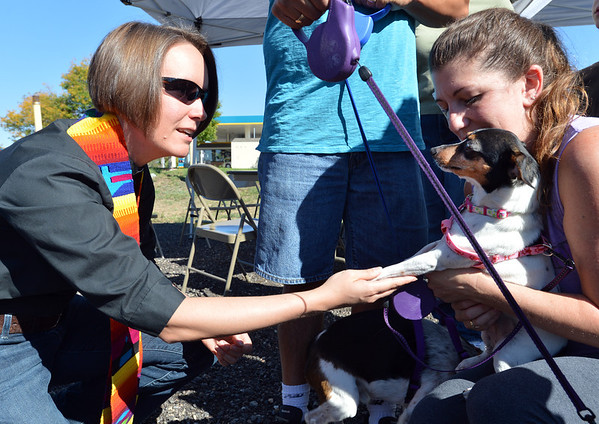 Rev. Kim Seidman reaches out to give the Blessing of the Animals to Dottie Mae, owned by Michelle Villarreal, at Holy Comforter Episcopal Church on Saturday.<br /> September 29, 2012<br /> staff photo/ David R. Jennings