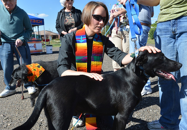Rev. Kim Seidman blesses Becker a black lab from Mile High Lab Mission during the Blessing of the Animals at Holy Comforter Episcopal Church on Saturday.<br /> September 29, 2012<br /> staff photo/ David R. Jennings